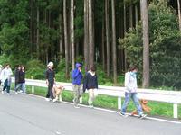 sanpo2.JPGのサムネール画像