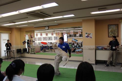 konnnokunntosakura.JPG