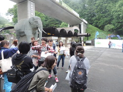 tamazoo-entrance1.JPGのサムネール画像