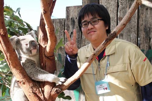 zoo-koala2.jpg