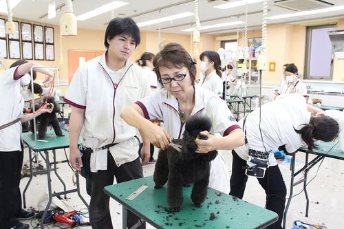Kawada-teacher.jpg