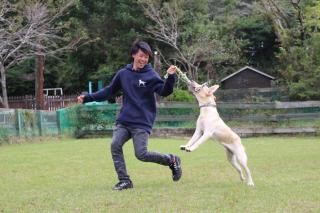 pict-dogrun5.jpg
