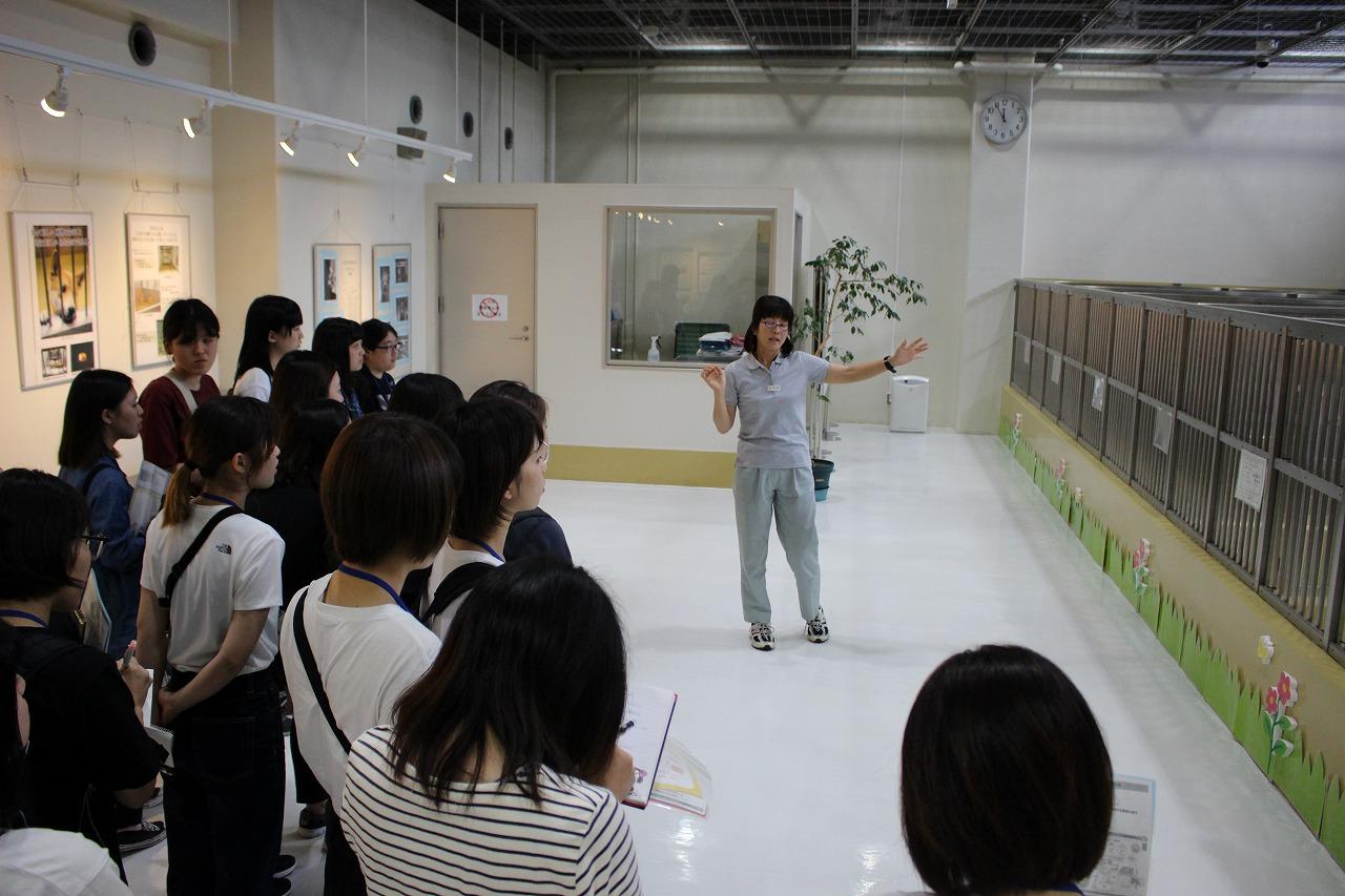 http://tokyo.iac.ac.jp/blog/photos/2018.06.06doubutsuaigo1.jpg