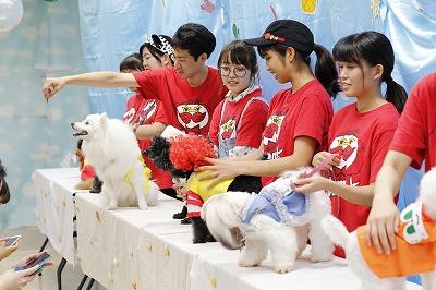http://tokyo.iac.ac.jp/blog/photos/2018.07.21biyou2.jpg
