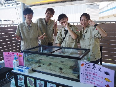 http://tokyo.iac.ac.jp/blog/photos/2018.07.21shiiku1.jpg
