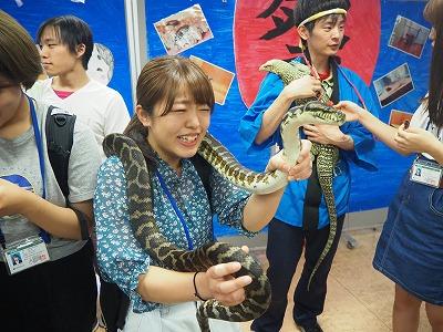 http://tokyo.iac.ac.jp/blog/photos/2018.07.21shiiku11.jpg