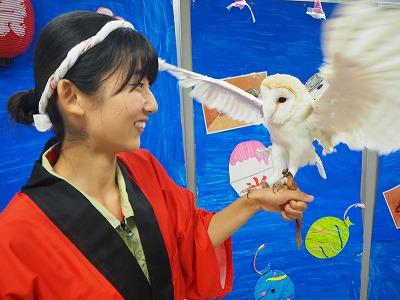 http://tokyo.iac.ac.jp/blog/photos/2018.07.21shiiku12.jpg