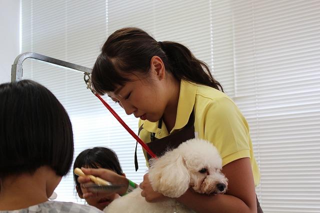 http://tokyo.iac.ac.jp/blog/photos/2018.8.28biyo1.jpg