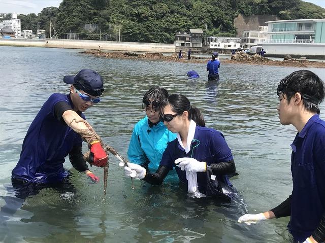 http://tokyo.iac.ac.jp/blog/photos/20180713taco7.jpg