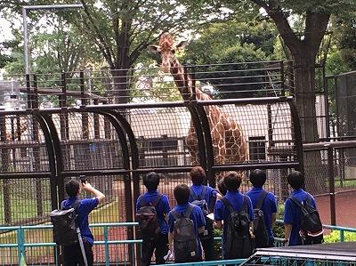 https://tokyo.iac.ac.jp/blog/photos/2019.07.02kirinn.jpg