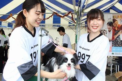 https://tokyo.iac.ac.jp/blog/photos/2019.10.19biyoubu-su%E2%91%A3.jpg