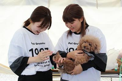 https://tokyo.iac.ac.jp/blog/photos/2019.10.19biyoubu-su%E2%91%A4.jpg