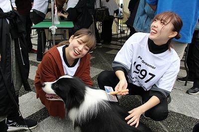 https://tokyo.iac.ac.jp/blog/photos/2019.10.19biyoubu-su%E2%91%A6.jpg