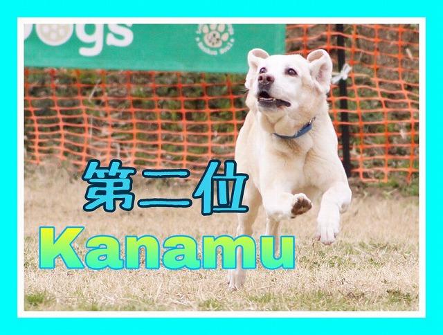 https://tokyo.iac.ac.jp/blog/photos/2019.10.19kanamu.jpg