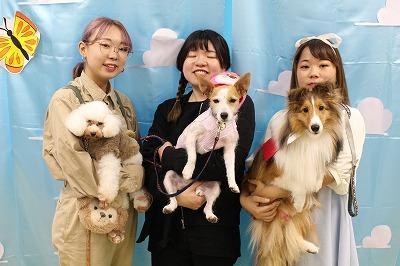 https://tokyo.iac.ac.jp/blog/photos/20191102fashion.jpg