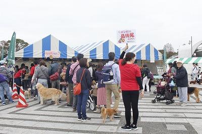 http://tokyo.iac.ac.jp/blog/photos/wanwan%20bu-su.jpg
